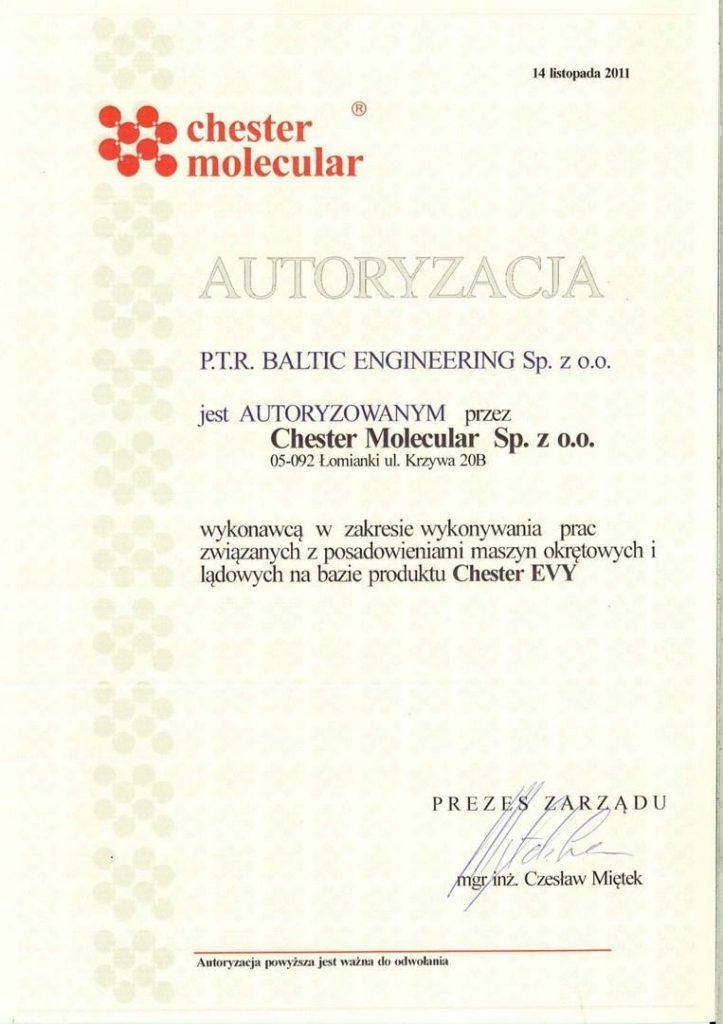 Chester Molecular 2011